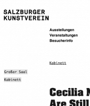 Salzburger Kunstverein – Website